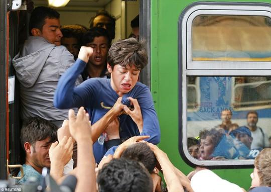 Sốc với cảnh ôm vợ con nằm ra đường ray vì sợ trại tị nạn