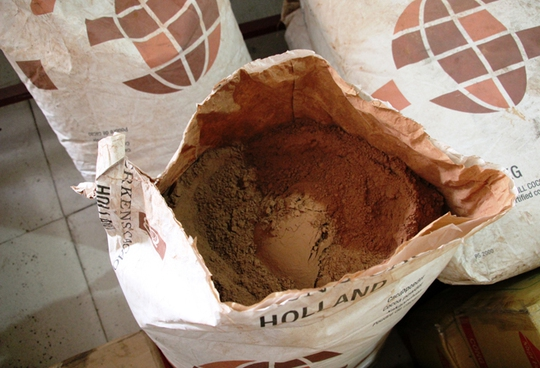 Nguyên liệu ca cao để sản xuất chocolate.
