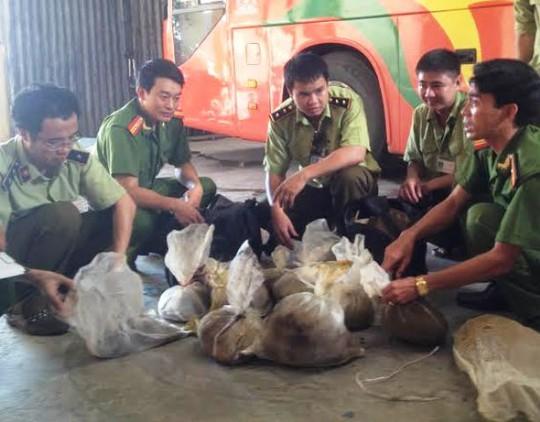 12 con tê tê và rùa gai được lực lượng Quản lý thị trường Ninh Bình phát hiện thu giữ