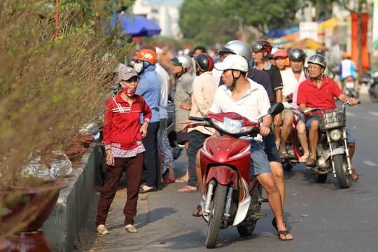 Hoa xếp thành dãy trên con đường men dọc bờ kênh. Người dân thường tranh thủ ghé vào mua sắm vài chậu kiểng chưng Tết