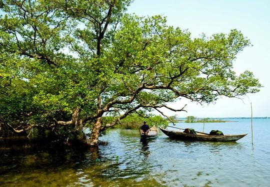 Người dân Tam Hải sống chủ yếu bằng nghề giăng câu, thả lưới
