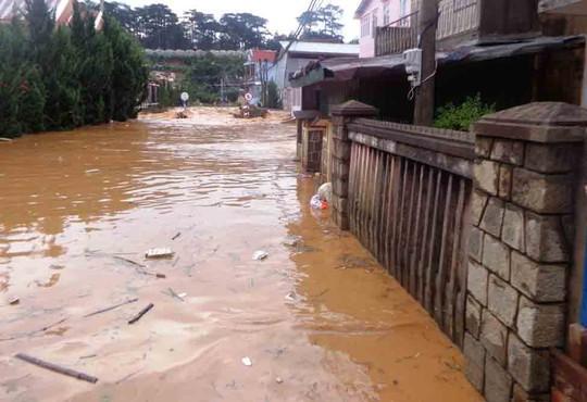 Cứ có mưa lớn là TP Đà Lạt lại ngập trong nước