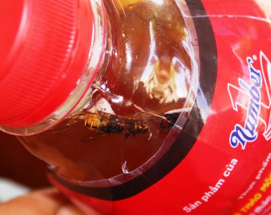 Chai nước Dr Thanh có ruồi còn hạn sử dụng