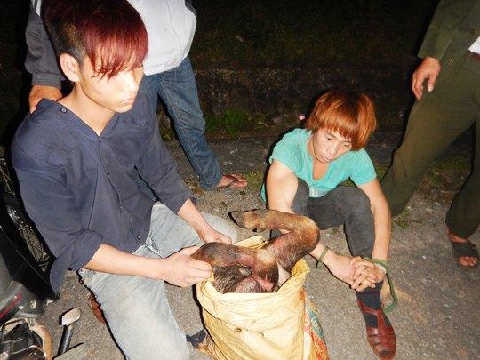 Hai đối tượng cùng tang vật 42 kg thịt sơn dương bị bắt tại hiện trường