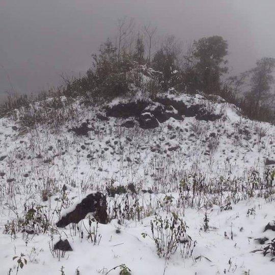 Tuyết trên đỉnh Ô Quý Hồ vào sáng nay. Ảnh: Lương Xuân Long