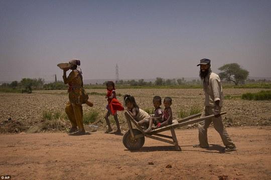 Ít nhất 1.424 người thiệt mạng vì nắng nóng ở Ấn Độ. Ảnh: AP