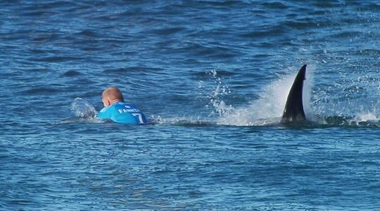 Khoảnh khắc Mick Fanning bị cá mập tấn công. Ảnh: Indian Express