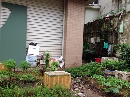 Những căn biệt thự ngót nghét chục tỉ đồng trở thành bãi rác tự phát trong khu đô thị.