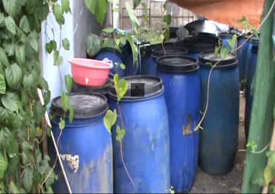 thùng nhựa chứa dung dịch ngâm hơn 3 tấn măng