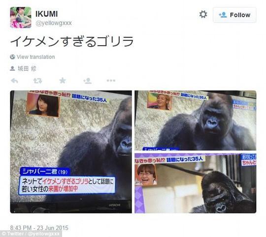 Chủ khỉ nổi như cồn trên mạng xã hội. Ảnh: Twitter