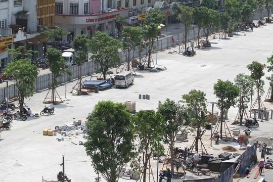 Cây xanh được trồng dọc hai bên đường