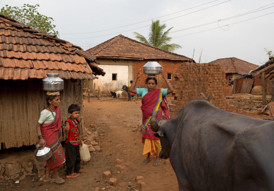 """""""Vợ nước"""" rất phổ biến ở làng Denganmal. Ảnh: Reuters"""