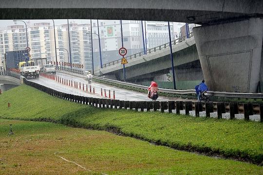 Những hôm trời mưa, lợi dụng lúc cơ quan chức năng khó xử lí, lượng xe máy di chuyển lên cầu vượt Cát Lái càng nhiều hơn