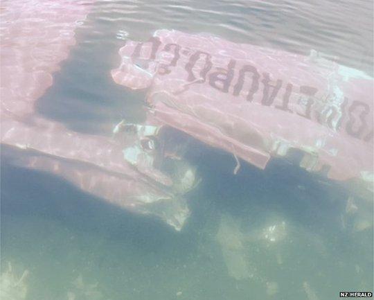 Chiếc máy bay rơi xuống hồ ở đảo Bắc. Ảnh: New Zealand Herald