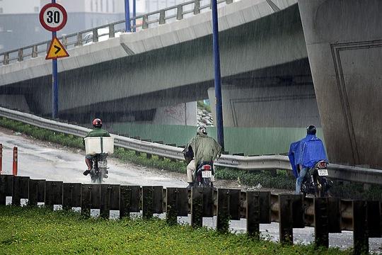 Thậm chí, nhiều người dân còn bất chấp nguy hiểm dừng xe máy trên cầu vượt để trú mưa