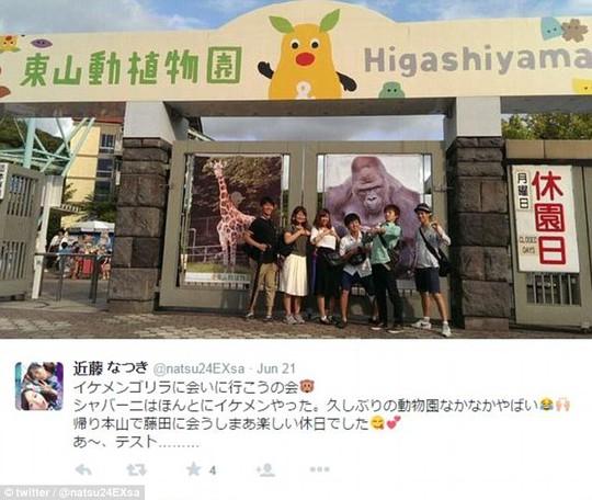 """Phụ nữ Nhật điên đảo vì khỉ đột """"đẹp trai"""""""