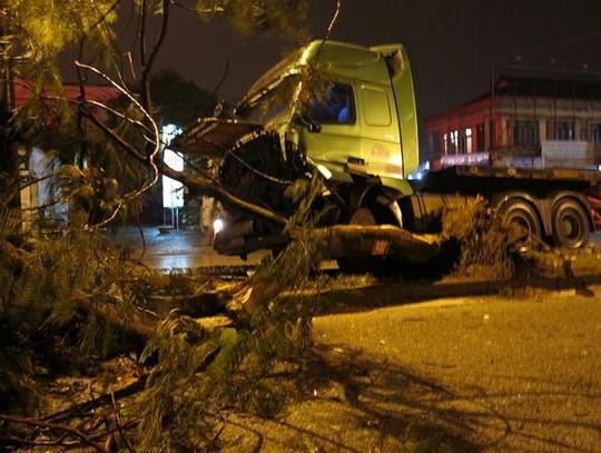 Xe đầu kéo đâm đổ cây phượng lớn xuống lòng đường.