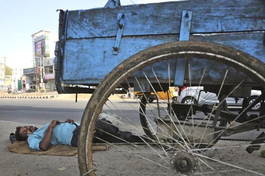 Nằm ngủ dưới bóng râm ngoài đường ở Hyderabad. Ảnh: AP