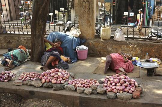 Kiệt sức vì nắng nóng ở Hyderabad. Ảnh: AP
