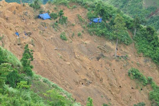 Hàng chục hầm vàng trên đồi Cà Nhút, xã Trà Quân, huyện Tây Trà (Quảng Ngãi).