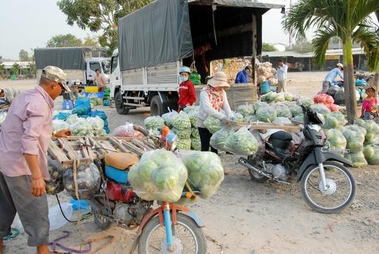 Ông Ngô Hồng Yến, Chủ tịch UBND huyện Tịnh Biên, cho biết: Cửa khẩu Quốc tế Tịnh Biên – Phnom Den là điểm nối liền giữa Quốc lộ 91 Việt Nam và Quốc lộ 2 Campuchia. Từ đây, nông sản hàng hóa của Tịnh Biên vừa đi thẳng về Phnom Penh, vừa từ Takeo có thể qua Kampot và đi tiếp Quốc lộ 3 về Poset, Odong, Kampong Speu… rất thuận tiện.