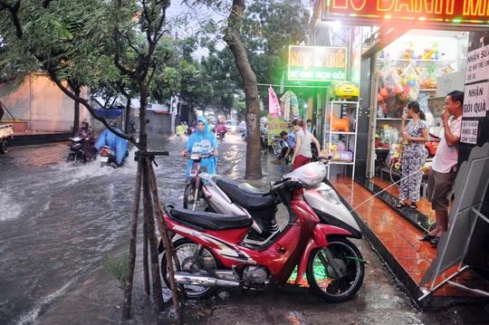 Hoạt đông buôn bán của các hộ dân hai bên đường Nguyễn Văn Quá bị ế ẩm nghiêm trọng