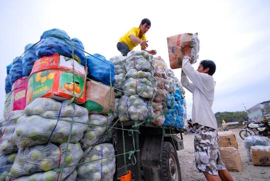 Hàng hóa xuất bán qua cửa khẩu hầu hết là củ, quả và chủ yếu được vận chuyển bằng đường bộ.