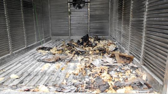 Hàng trăm con gà con bị chết cháy khi chiếc xe tải đang chạy trên đường bỗng phát hỏa trên Quốc lộ 1K (quận Thủ Đức, TP HCM)