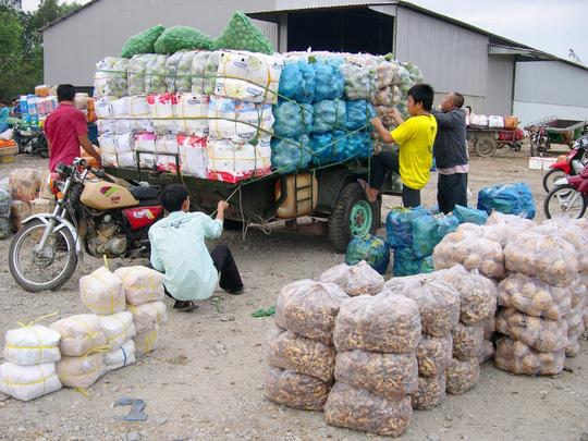 Chị Trần Thị Kim Cú, chủ vựa, chuyên thu gom các loại trái tươi để xuất sang nước bạn Campuchia từ nhiều năm nay, cho biết: Bình quân mỗi ngày cơ sở chị thu mua từ 20-30 tấn nông sản chủ yếu như rau, củ, quả… để xuất sang thị trường Campuchia.