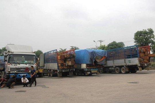 Một đoàn xe tải chở gỗ từ Lào về Việt Nam bị lực lượng TTGT Nghệ An bắt giữ.