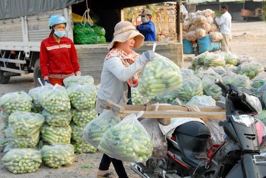 Ngoài những chuyến hàng được ký hợp đồng vận chuyển bằng xe tải hàng chục tấn xuất bến từ cửa khẩu An Giang đến TP Phnom Den (Campuchia), những thương lái dùng xe máy, xe tự chế để buôn hàng sang Campuchia, đồng thời mua hàng mang về nước tiêu thụ.