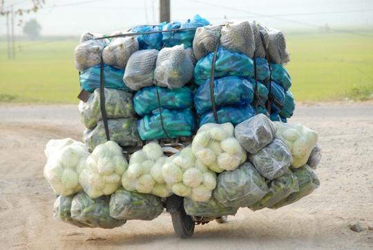 """Những chiếc xe gắn máy của thương lái Campuchia sang Việt Nam mua nông sản rồi """"cổng"""" về như thế này mỗi chuyến từ 500 -700 kg các loại củ, quả."""