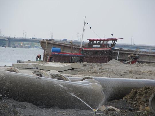 Dự án lấn sông Đồng Nai do Công ty CP Toàn Thịnh Phát làm chủ đầu tư     Ảnh: Minh Khanh