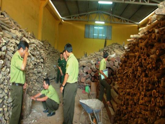 Kho gỗ không rõ nguồn gốc được lực lượng chức năng phát hiện ở trung tâm TP Cam Ranh