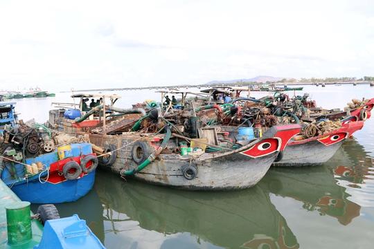Các phương tiện khai thác cát trái phép được đưa về neo đậu tại cảng Hà LộcẢnh: TTXVN