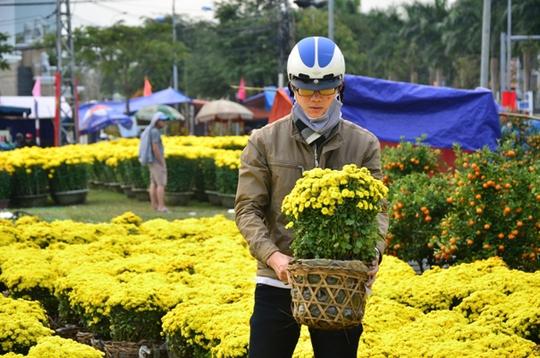 Cúc mâm xôi từ Sa Đéc (Đồng Tháp) cũng có mặt tại chợ hoa Đà Nẵng với giá 100 ngàn đồng 1 giỏ
