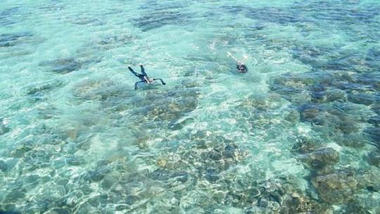 Tăng nỗi lo khi phát hiện san hô ăn vụn nhựa. Anh: MADIHAH HAMID