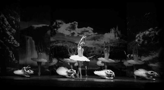 Xem múa ballet Hồ Thiên nga với công nghệ 3D