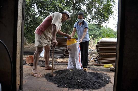 Trong một tuần dùng đèn khò diệt, gia đình bà Diệp Thị Thêu (xã Quang Trung, huyện Thống Nhất, tỉnh Đồng Nai) đã thu gom hàng chục bao tải bọ đậu đenảnh: Xuân Hoàng