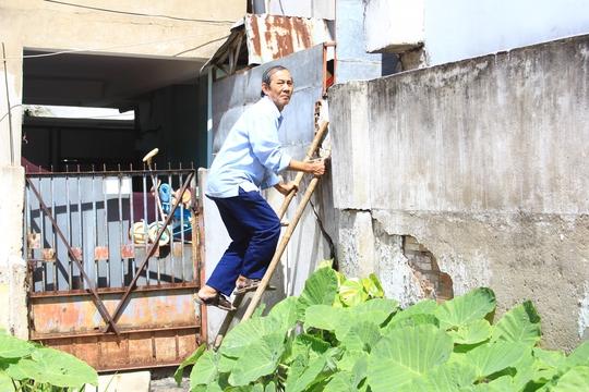 Hằng ngày, gia đình ông Sơn phải trèo thang đi nhờ hàng xóm để vào nhà