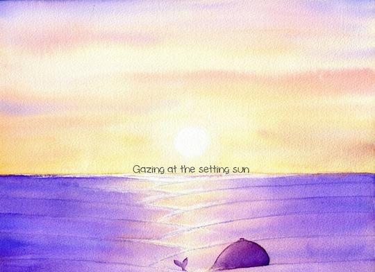 ...Ngắm mặt trời lặn của hoàng hôn