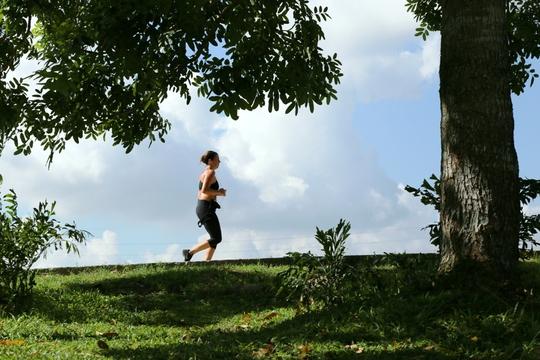 Một người nước ngoài chạy thể dục ngang qua vòm cây trong TP. Mới
