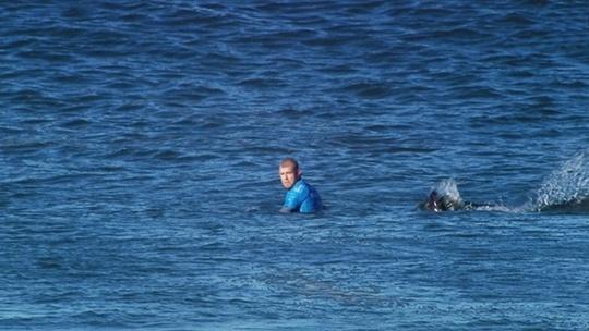 Cá mập tấn công VĐV lướt ván suýt chết