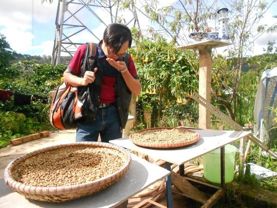 Sản phẩm du lịch của Lâm Đồng cần mang tính đặc thù. Trong ảnh: Du khách tìm hiểu quy trình sản xuất cà phê chồn Đà Lạt