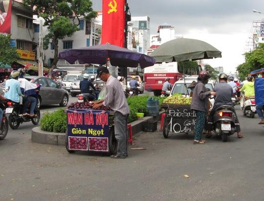 Trái cây được bày bán trên các tuyến đường ở TP HCM đa số là hàng Trung Quốc nhưng được quảng cáo là hàng trong nước