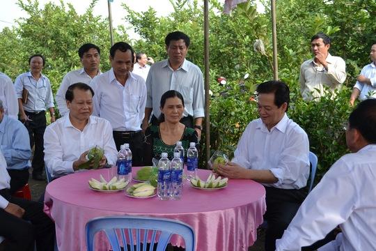 Thủ tướng Nguyễn Tấn Dũng thăm một tổ hợp tác sản xuất ổi tại thị xã Long Khánh, tỉnh Đồng Nai. Long Khánh là 1 trong 2 đơn vị đạt chuẩn nông thôn mới đầu tiên trên cả nước Ảnh: Xuân Hoàng