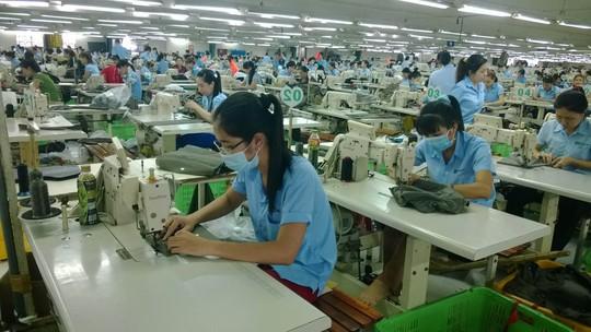 Khi doanh nghiệp thực hiện tốt trách nhiệm xã hội, người lao động yên tâm làm việc, cống hiến