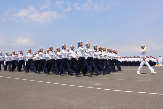 Các lữ đoàn bảo vệ đảo