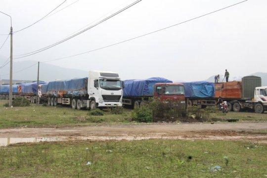 Đoàn xe chở gỗ quá tải 23 chiếc bị cơ quan chức năng tạm giữ