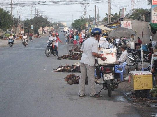 Gà trống sống được bán thành một dãy dài trước chợ Bà Bộ